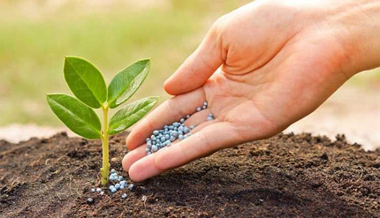 Удобрение основной продукт производства