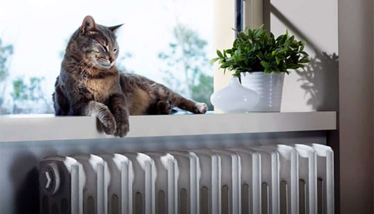 Антифриз для системы отопления